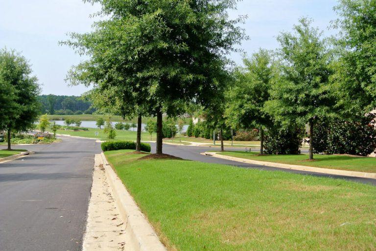 New Housing Developments - Mimms Trail - Mimms-Trail-325-768x514