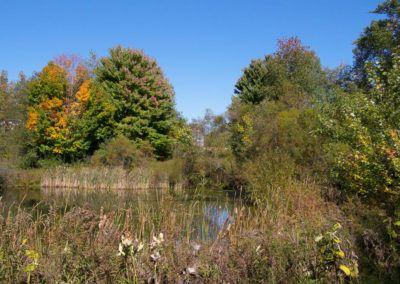 Summerset Meadows-631