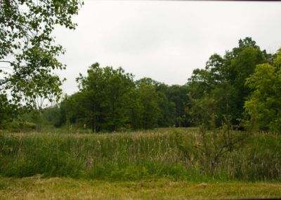 White Hills Lakes-127