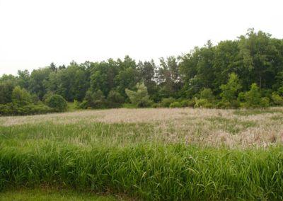 White Hills Lakes-128