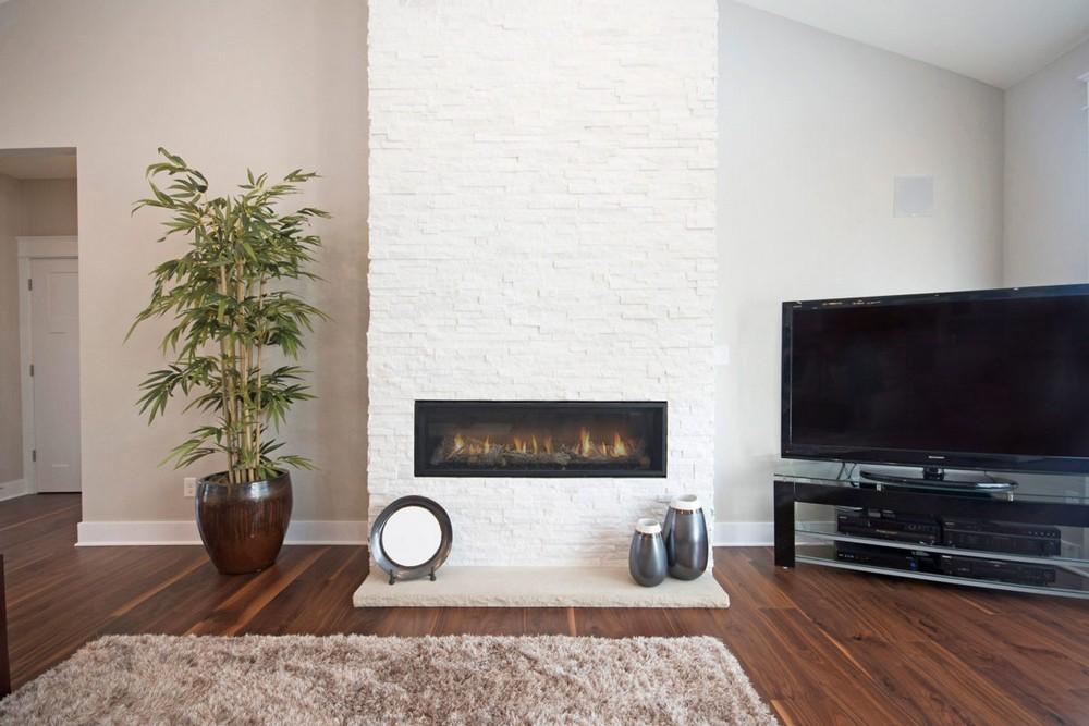Design Trends of 2021: Plants   Eastbrook Homes